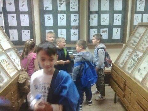 posjeta-ucenika-1-i-2-razreda-os-djurdjevik-djurdjevik-bioloska-zbirka-27.jpg