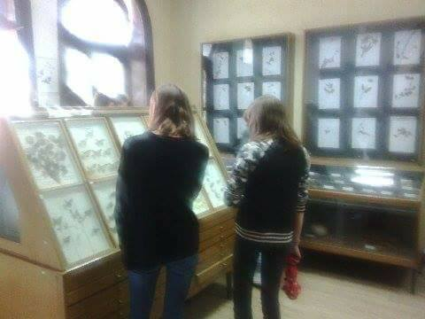 tokom-protekle-sedmice-u-posjeti-muzeju-odnosno-bioloskoj-zbirci-bili-su-ucenici.jpg