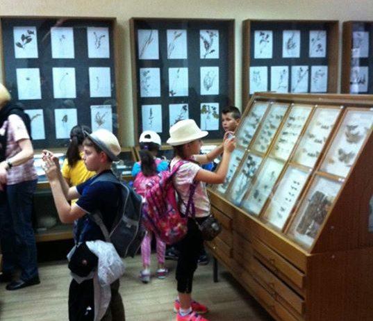 ucenici-i-nastavnice-osme-osnovne-skole-iz-brke-posjetili-su-biolosku-zbirku-03.jpg